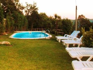 Holiday house in a quiet area for up to 7  7 persons with private pool - PT-1075638-Gondoriz-Terras do Bouro - Braga District vacation rentals