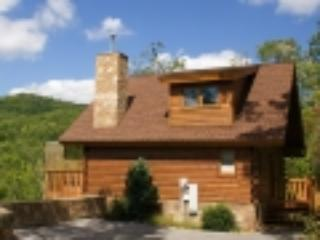Bear Hugs - Image 1 - Gatlinburg - rentals