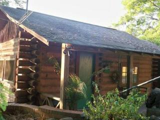 cabin on cane river - Louisiana vacation rentals