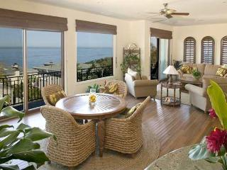Exquisite Home- Ocean Views/ Very close to beach! - Cardiff by the Sea vacation rentals