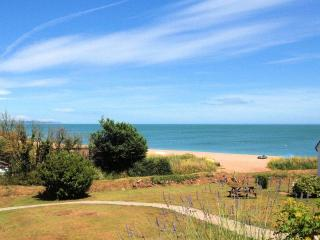 Driftwood - Beesands vacation rentals
