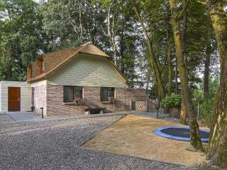 Maastricht, Luxery Holiday Home 2-6 P. - Belgium vacation rentals