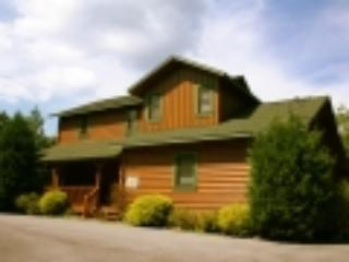 Wild Daisy - Gatlinburg vacation rentals