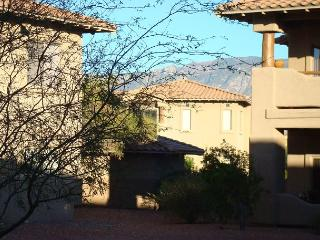 Cozy 2 Bedrm 2 Bath First Floor close to heated pool - Tortolita vacation rentals