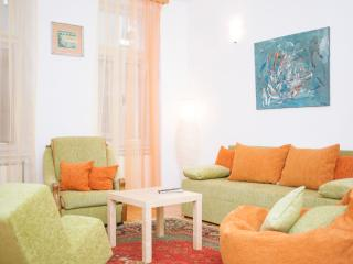 Apartment New Age - Sarajevo vacation rentals