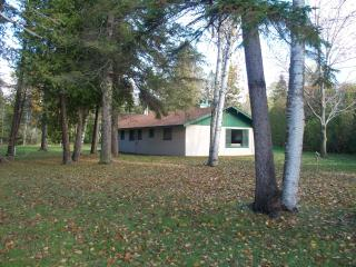 Cottage on Mullett Lake with big yard - Cheboygan County vacation rentals