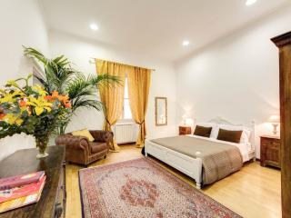 STUNNING 5 STAR APARTMENT  BEST & SAFE AREA - Rome vacation rentals