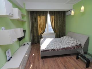 Perfect apartment in the very center - Moldova vacation rentals