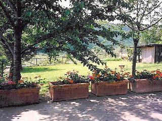 Cottage at Le Chiantinelle - Greve in Chianti vacation rentals