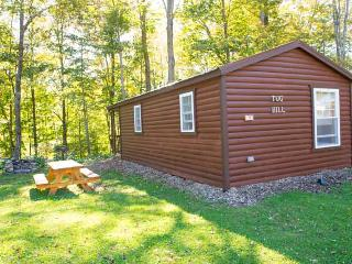 Tug Hill Lodge, One-bedroom Cabin - Taberg vacation rentals