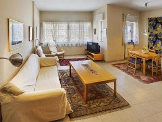 Spacious, Light 2 Bdr With Huge Private Terrace - Jerusalem vacation rentals