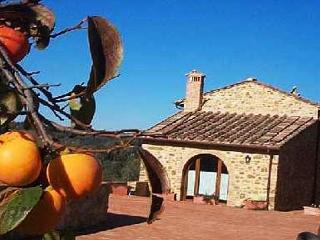 Wine Barrel House - Montefiridolfi vacation rentals