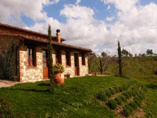 Apartment Vite - Asciano vacation rentals
