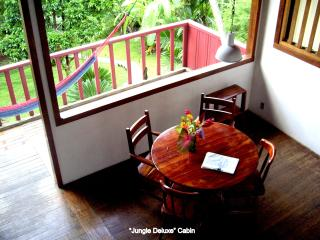 Pavones Jungle Cabin close to the Surf - Pavones vacation rentals