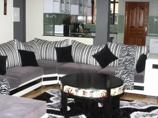 Geo Mara Executive Apt Kilimani Plus Rental Car - Nairobi vacation rentals