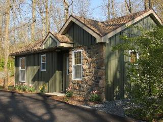Refreshing Mountain Cabin 24 - Stevens vacation rentals