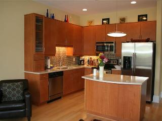 Gorgeous 2BR Furnished Condo, Dwntn Wilmington NC - Wilmington vacation rentals
