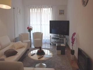 NIZZA CENTER LARGE AND LUMINOUS 3 BEDROOMS APT - Nice vacation rentals