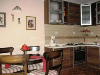 City House Apartment - Tivat vacation rentals