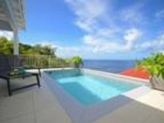 Villa Gros Islets - Saint Barthelemy vacation rentals