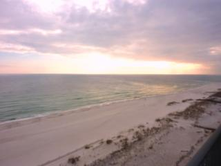 PREMIUM-PHX 10 SPECIAL - Sep 1-4 $130/nt,  Sep 11-20 $975/wk - Orange Beach vacation rentals