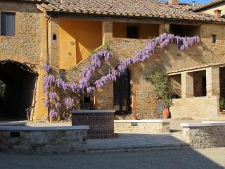 Beautiful Tuscan Farm-House, close to Montalcino - Buonconvento vacation rentals