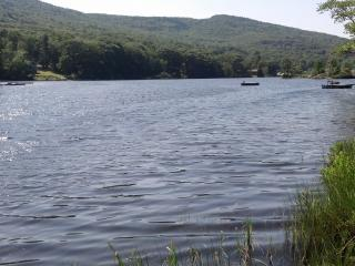 Four Season Vacation Cottage with Lake access - Alabama vacation rentals