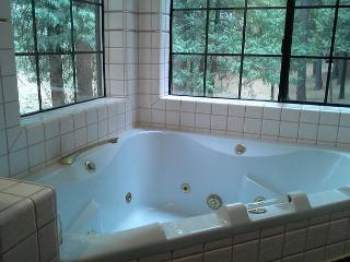 Blue Lake Springs cabin on level lot for easy access all year! - Arnold vacation rentals