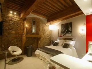 Lovely studio in the historical heart of Lyon - Lyon vacation rentals