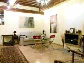 A XVth century building in the heart of Old Lyon. - Lyon vacation rentals