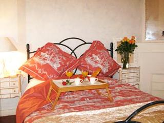 Charming apartment right in the centre of Cannes - Cannes vacation rentals