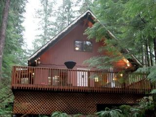 Snowline Cabin #98 - A cozy cabin with a free standing wood stove and outdoor hot tub. - Glacier vacation rentals