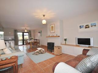 YNA Dingle Cottages - Pebble Cottage - Castlegregory vacation rentals
