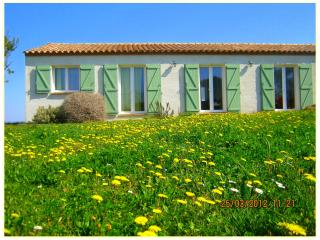 Splendid  villa for 6 people near Carcassonne in Cathar Country - Eyne vacation rentals