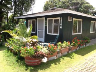 Ohia Kai Cottage Special Rate Kauai Kapaa downtown - Kapaa vacation rentals