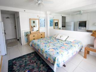 Inn on the Park - free wifi - Waikiki vacation rentals