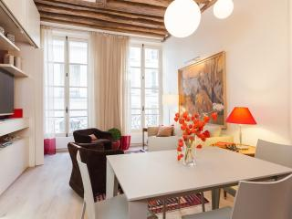 39. THE BEST OF SAINT GERMAIN-PRESTIGIOUS & MODERN - 5th Arrondissement Panthéon vacation rentals