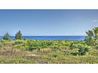 All of the Views, None of the Price (Mele Kai) - Puna District vacation rentals