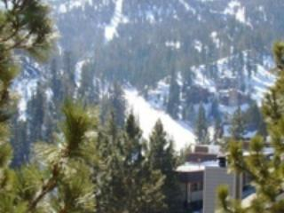 Tahoe Summit Village    (website: hidden) - Stateline vacation rentals