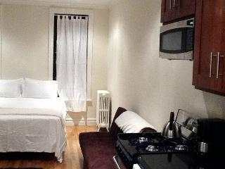 Wonderful West Village/NEW Studio - Manhattan vacation rentals