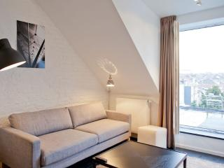 Luxurious Duplex Apartment trendy area in Brussels - Brussels vacation rentals
