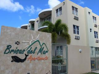 Brisas del Mar Penthouse (3rd floor) Right on 413 - Puerto Rico vacation rentals