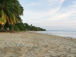 Sunfish Beachfront Condo - Right on Corcega Beach - Rincon vacation rentals