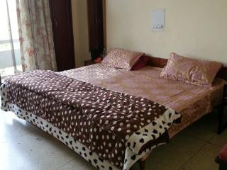 Furnished 2 Bedroom Apartment in Greater Kailash Part 2 , South Delhi . - National Capital Territory of Delhi vacation rentals