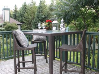 Winter Rental Lighthouse Point, Collingwood, ON - Collingwood vacation rentals