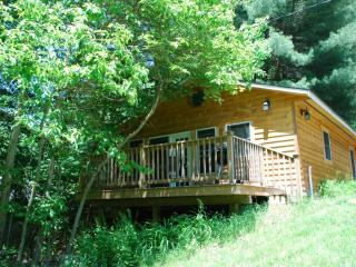Brookie Cottage on the Savage River - Swanton vacation rentals
