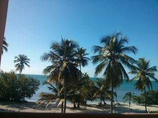 Beachfront 1 bedroom apartment with amazing view. - Cabo Rojo vacation rentals