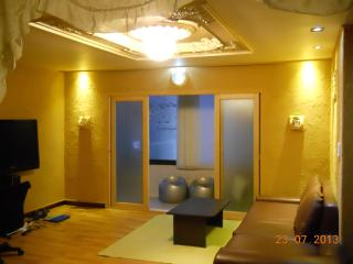 Rare duplex 4br. hwangto+rooftop - South Korea vacation rentals