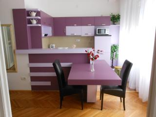 Comfortable apartment in Belgrade - Serbia vacation rentals