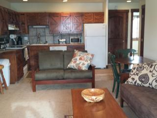 Mountain Condo near 7 ski areas - Dillon vacation rentals